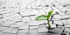 How To Create Value In Your Investment Portfolio