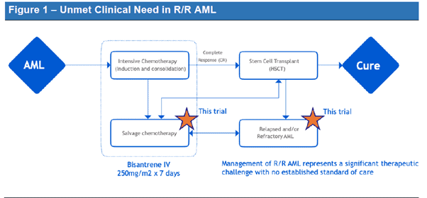 Race Oncology (ASX:RAC) - Unmet clinical Need