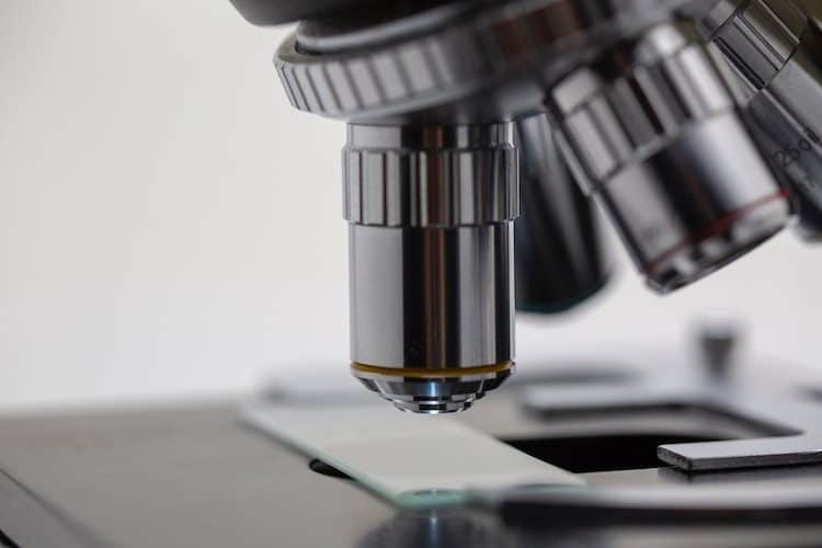 Race Oncology (ASX:RAC) is a Potential Acquisition Target in a $530B M&A Market